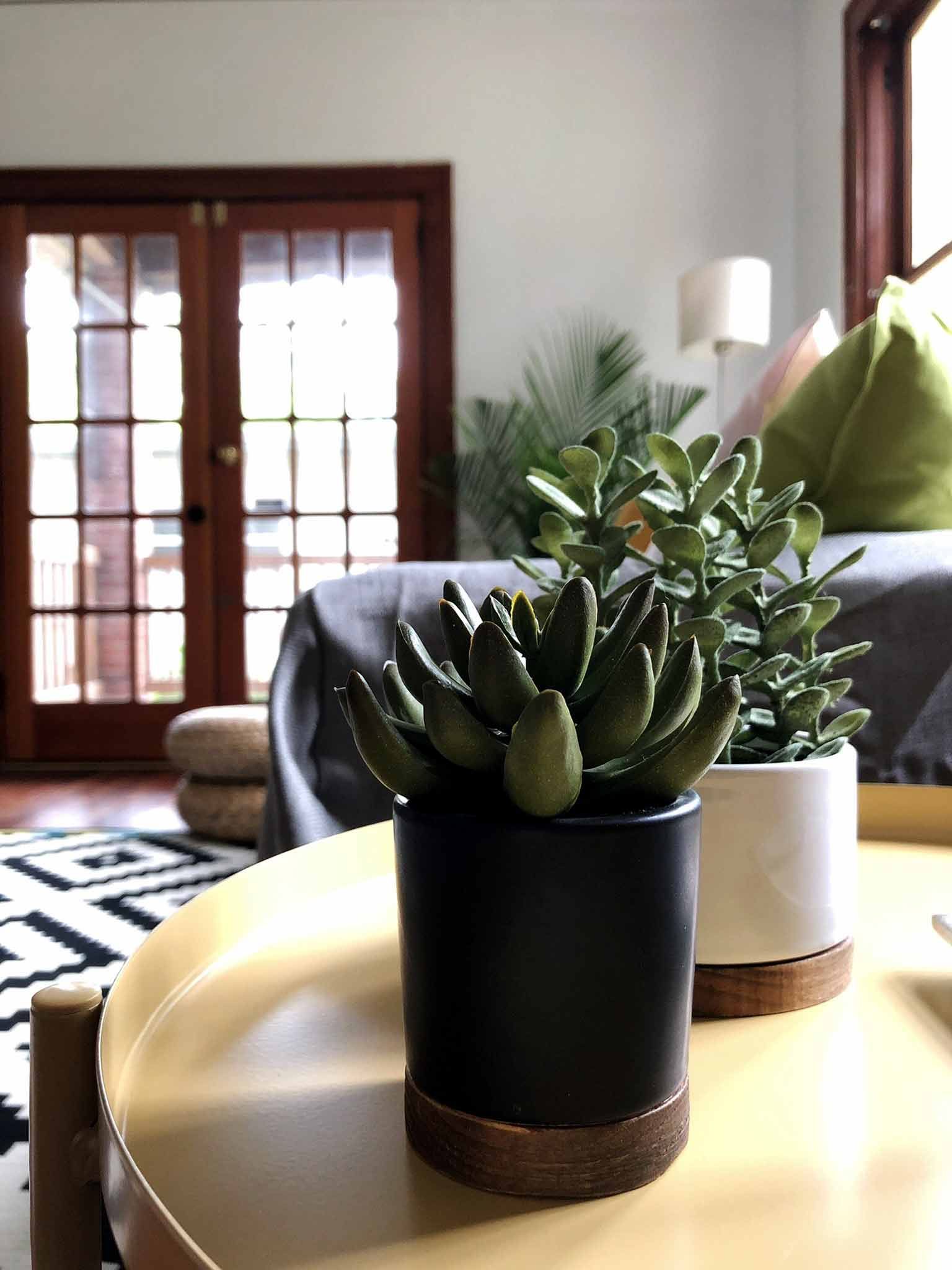 Faux succulents - Modern minimalist room makeover on a budget - That Homebird Life Blog