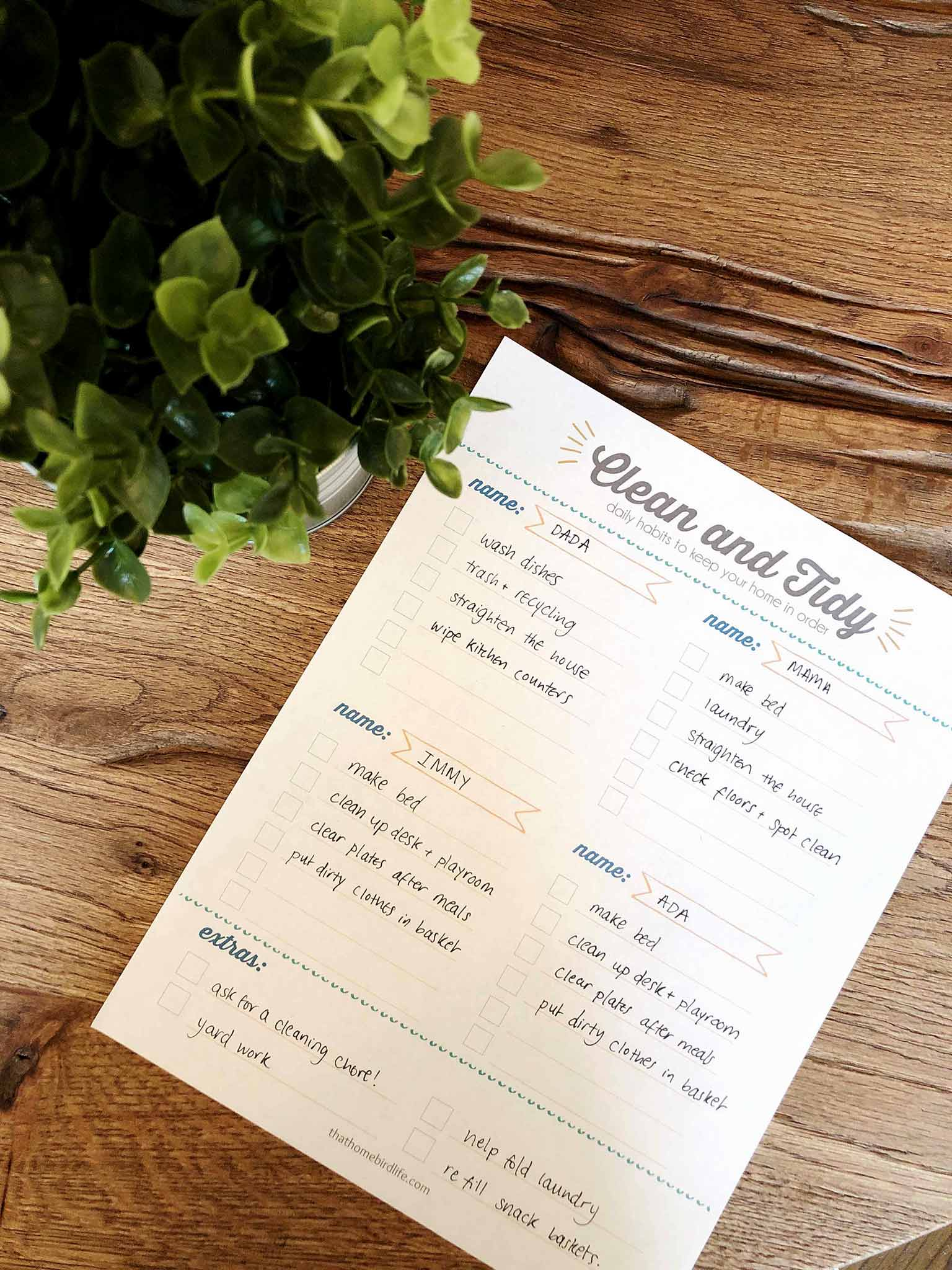 Cleaning checklist printable next to a plant